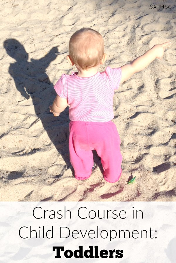 Toddlers can seem tricky, but if we understand their development with this crash course in child development toddlers edition, we just may save our sanity through the toddler years...maybe!