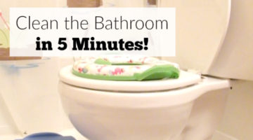 Clean the Bathroom in 5 Minutes!