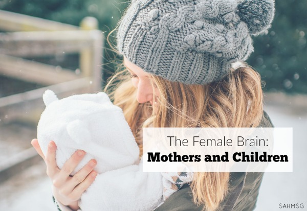 A book that shares how the female brain really does have us wired to follow a seasons of life mentality in motherhood and beyond.