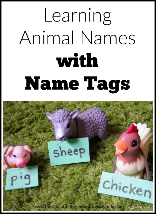 Kids interested in animal toys? Try adding an element of literacy to their play by learning animal names with name tags. A fun activity for toddlers and preschool.