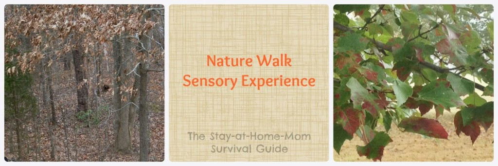 infant activity for autumn nature walk from The Stay-at-Home-Mom Survival Guide