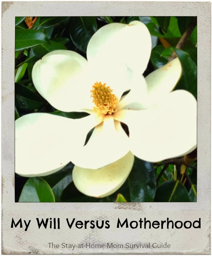 My Will Versus Motherhood