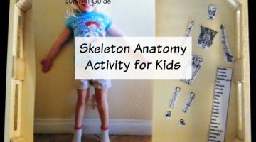 Skeleton Anatomy Activity for Kids