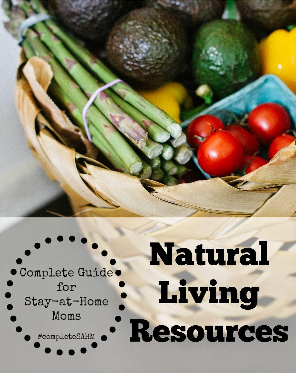 Complete Guide for Stay-at-Home Moms: Natural Living Resources and Remedies