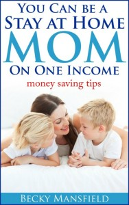 SAHM on One Income book image