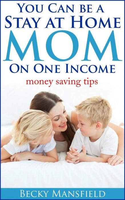 SAHM on One Income book image
