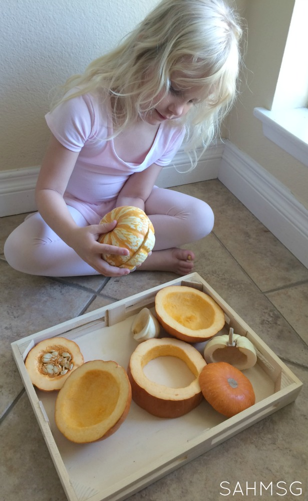 Fall Preschool Activities: Puzzles Made from Real Pumpkins.