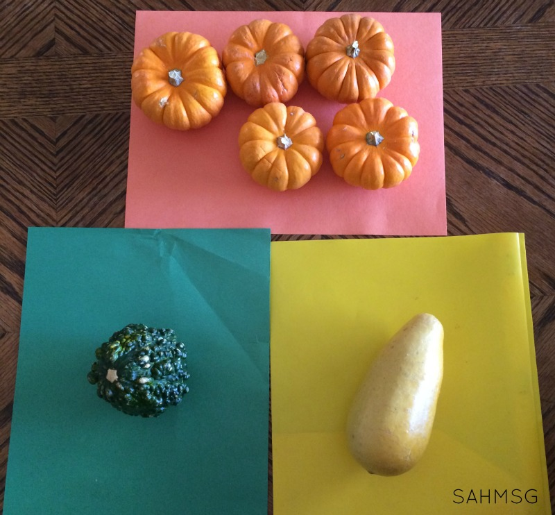 Ordering and classifying pumpkins-a fun Fall theme activity for preschool.