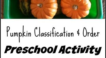 Preschool Activity: Pumpkin Classification and Order