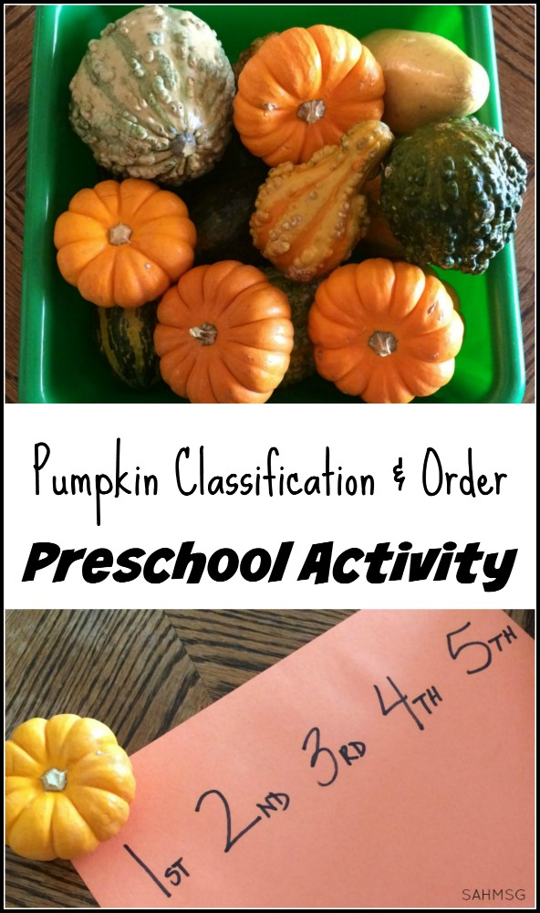 Preschool activity to explore observation skills, classification and putting items in an order. Pumpkins make this a fun Fall theme activity for preschool.