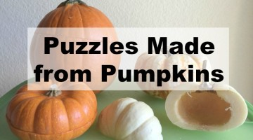 Homemade puzzles from real pumpkins as a Fall-themed Preschool Activity.