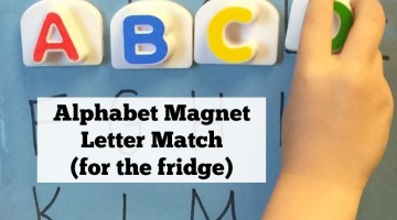 Alphabet Fridge Magnet Letter Match