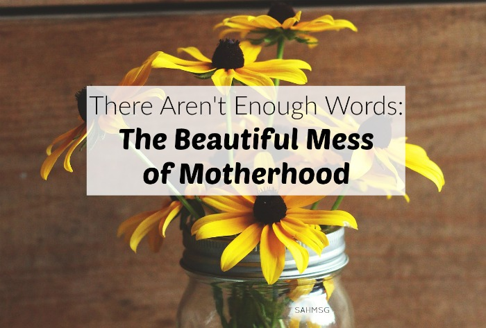 The challenges of motherhood wear me down, but there aren't enough words to say how much being a mom means to me. (Mom Motivation Mondays)