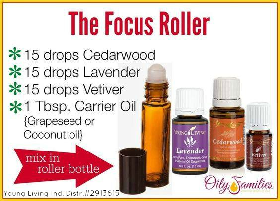 focus-roller-with-yl-number