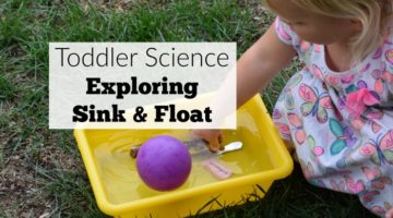 Science for Toddlers: Sink and Float Activities