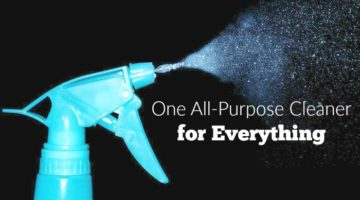 One All-Purpose Cleaner for Everything