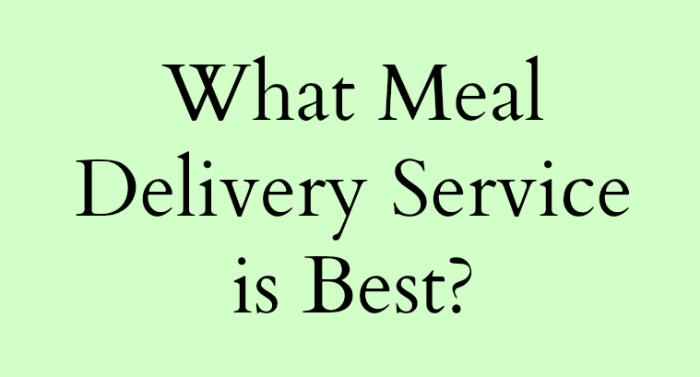 What meal delivery service is best? I took the guess work out of it for you with this comprehensive review of meal delivery service companies.