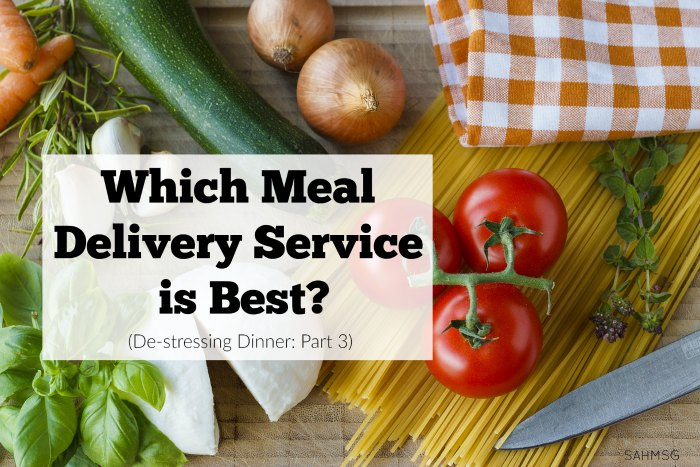 What meal delivery service is best? I reviewed 7 meal delivery services to do a meal delivery service comparison and share my thoughts on price, packaging and flavor!
