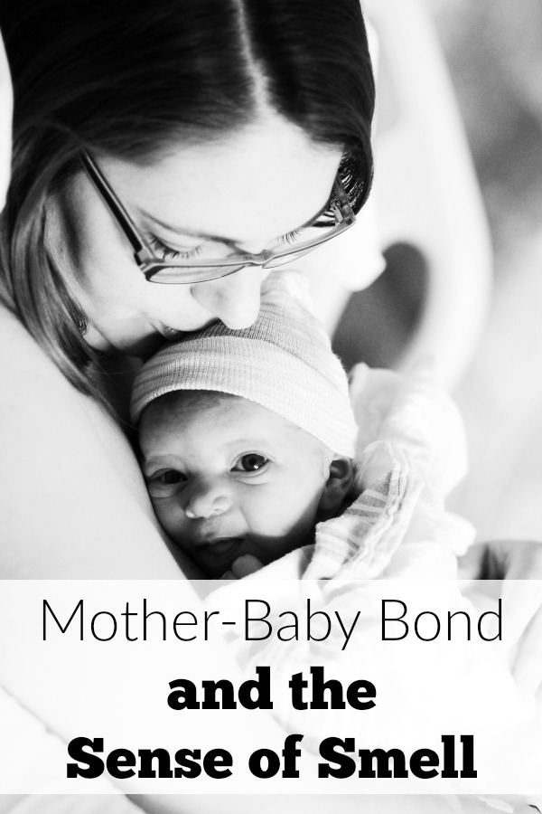What does a mother-baby bond and sense of smell have to do with one another?  A lot when you consider the brain!
