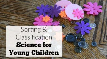 Sorting and classification activity for young children using buttons. A simple sorting activity for preschool chidlren that builds on big concepts.