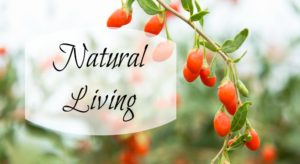 Natural Lifestyle Easy Button