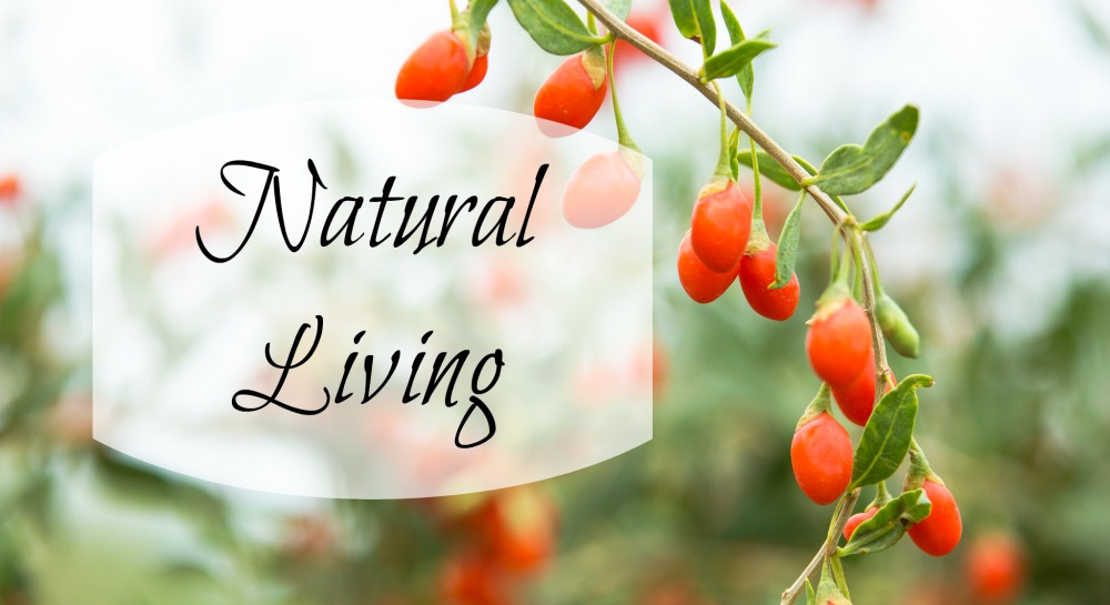 Want to live a more natural lifestyle but think it's complicated? Here is your natural lifestyle easy button.