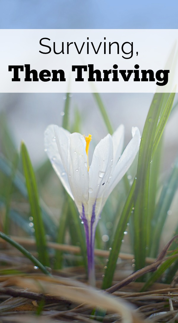 How do you get to thriving in motherhood? First surviving, then thriving with a gameplan.