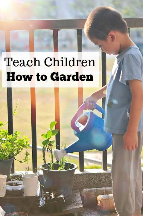Teach children how to garden, from starting seeds indoors to transplanting outside, these tips will teach children life lessons for gardening.