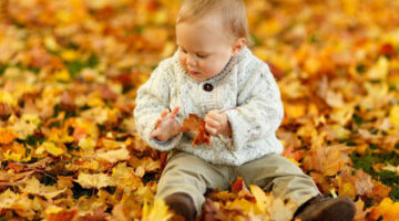 12 Fall toddler activities