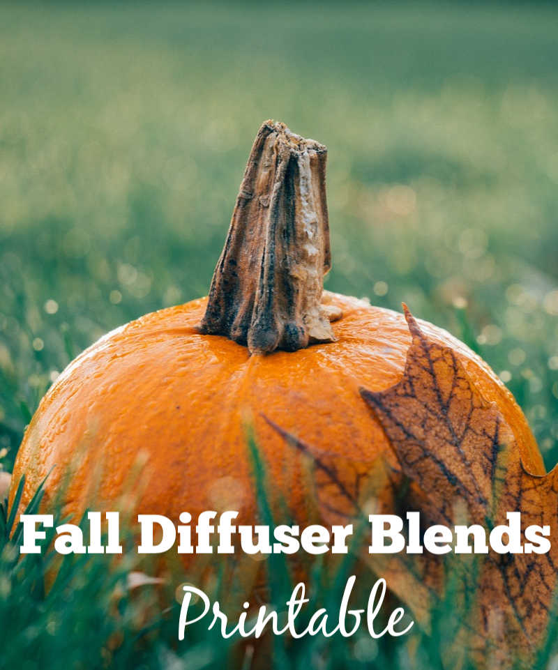 Fall diffuser recipes printable