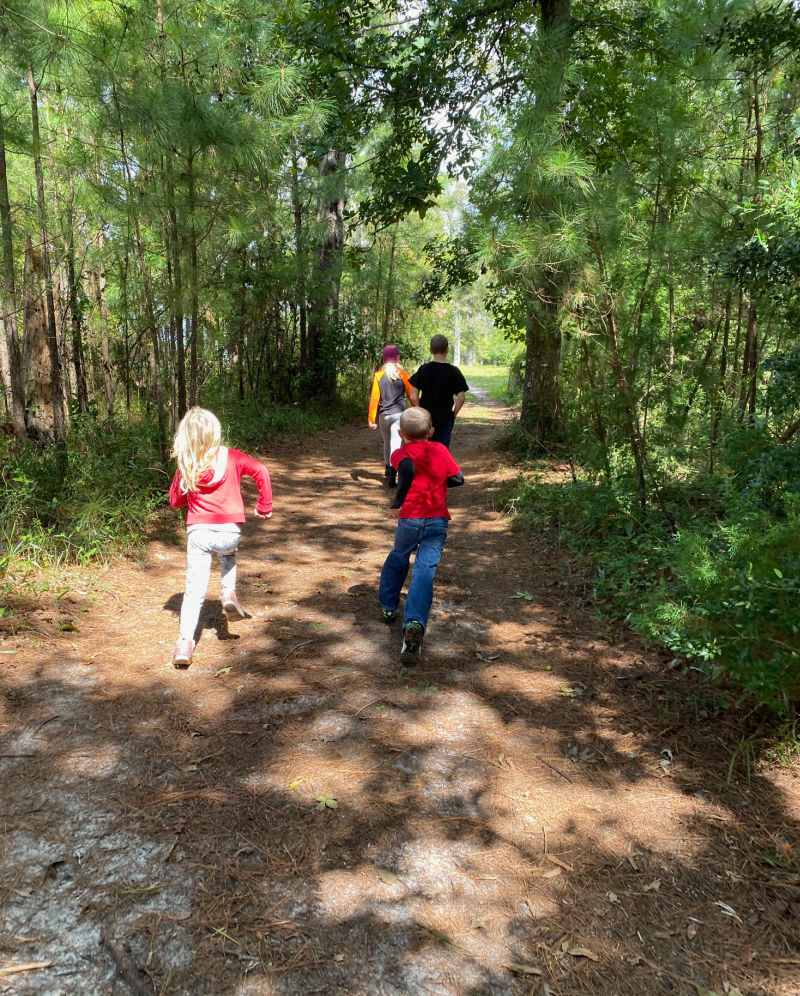 Fall preschool activities nature walk, leaf hunt, leaf collage and more.