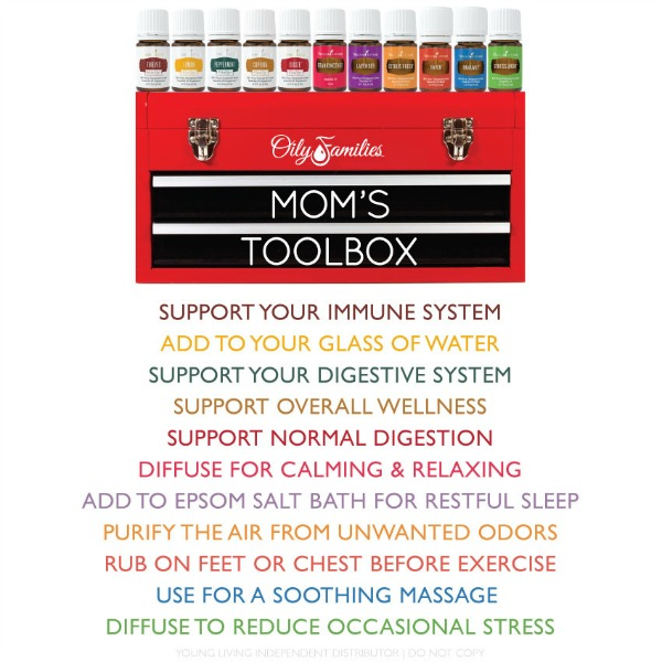 Moms toolbox of natural wellness tools on the natural living gift guide.